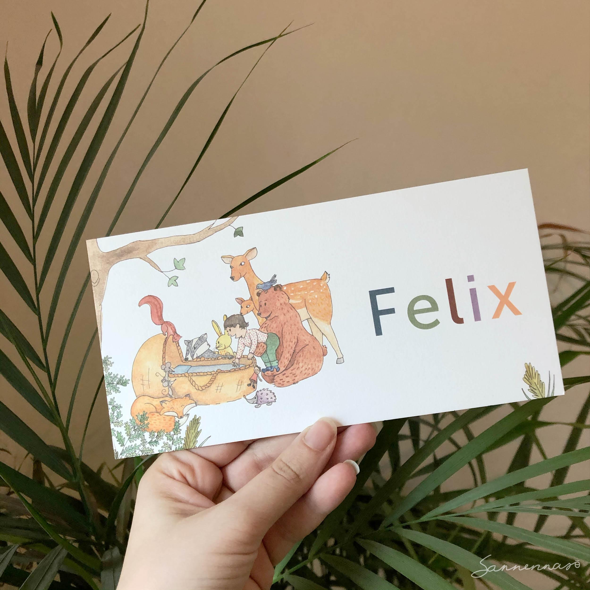 geboortekaartje-Felix